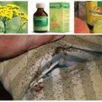 Средства для уничтожения насекомых