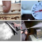 Уничтожение клопов воздействием температур