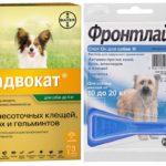 Капли для собак от паразитов