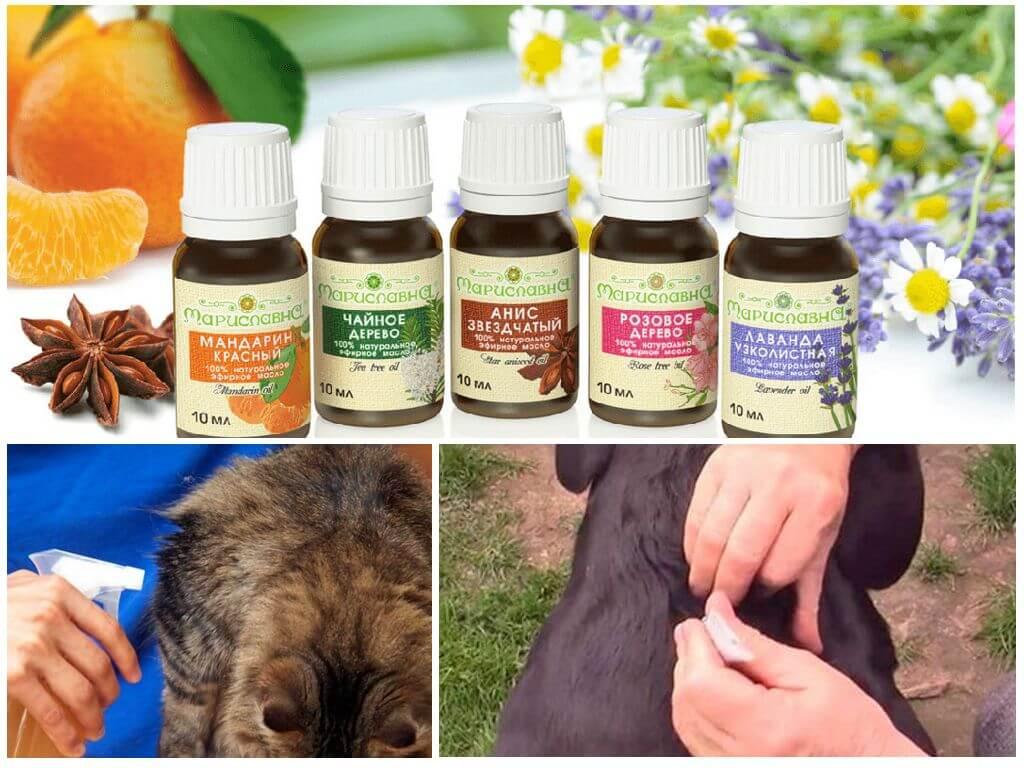 Эфирные масла для обработки животных