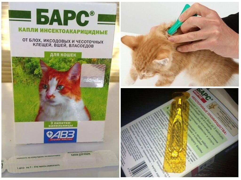Средство Барс для кошек