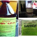 Биопрепараты для борьбы с вредителями
