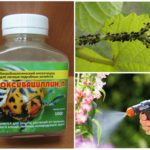 Битоксибациллин для борьбы с насекомыми