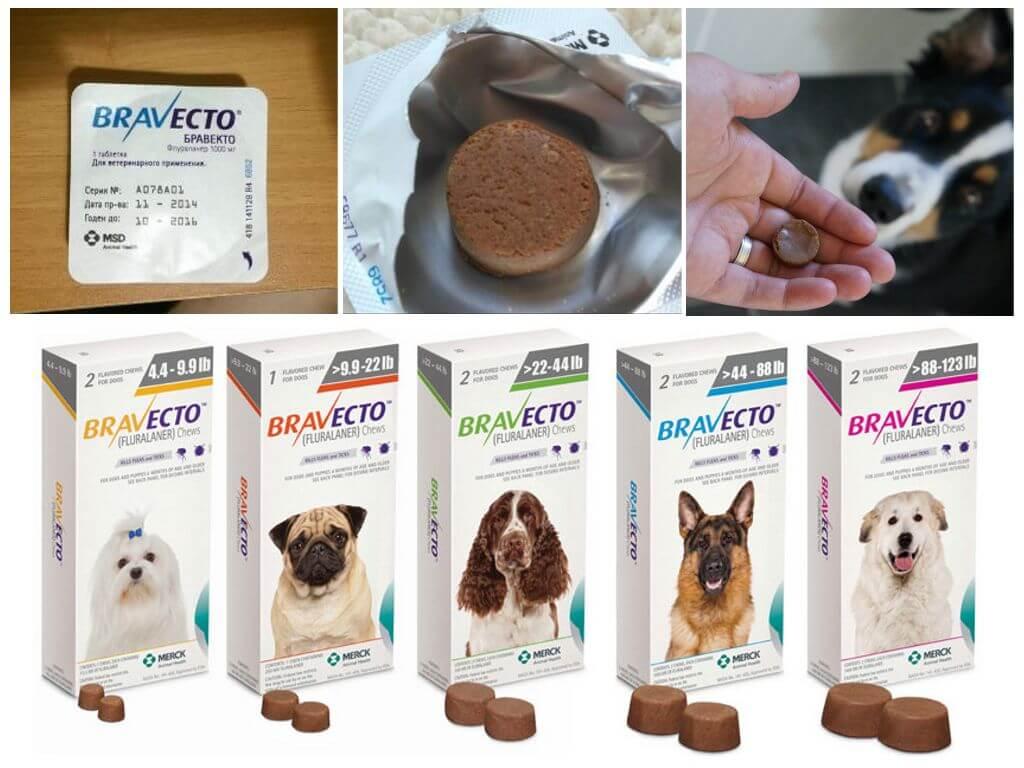 Противопаразитарные таблетки для собак Бравекто