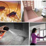 Применение спрея для обработки квартиры