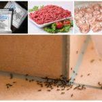 Фарш с борной кислотой для борьбы с муравьями