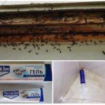 Препарат Чистый Дом от муравьев
