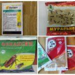 Инсектициды для уничтожения муравьев