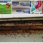 Химические препараты для борьбы с насекомыми