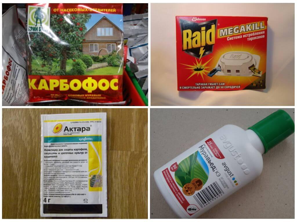 Химические средства против муравьев