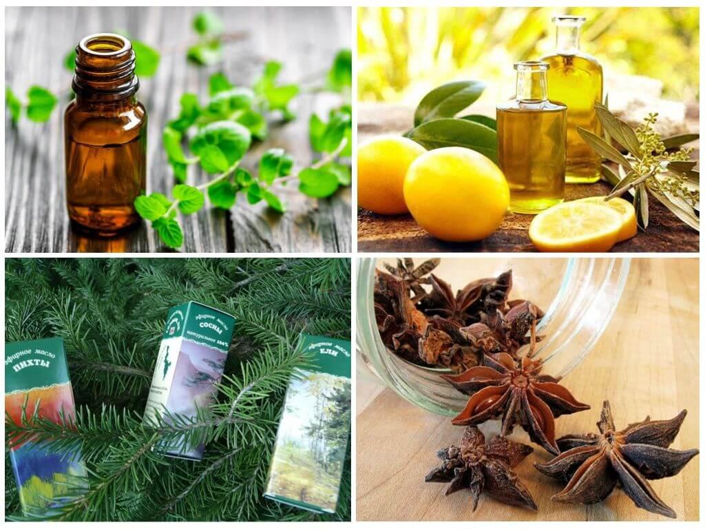 Эфирные масла отпугивающие насекомых
