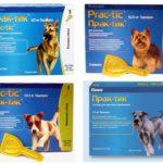 Капли Практик для собак от блох и клещей