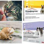 Таблетки для животных от блох