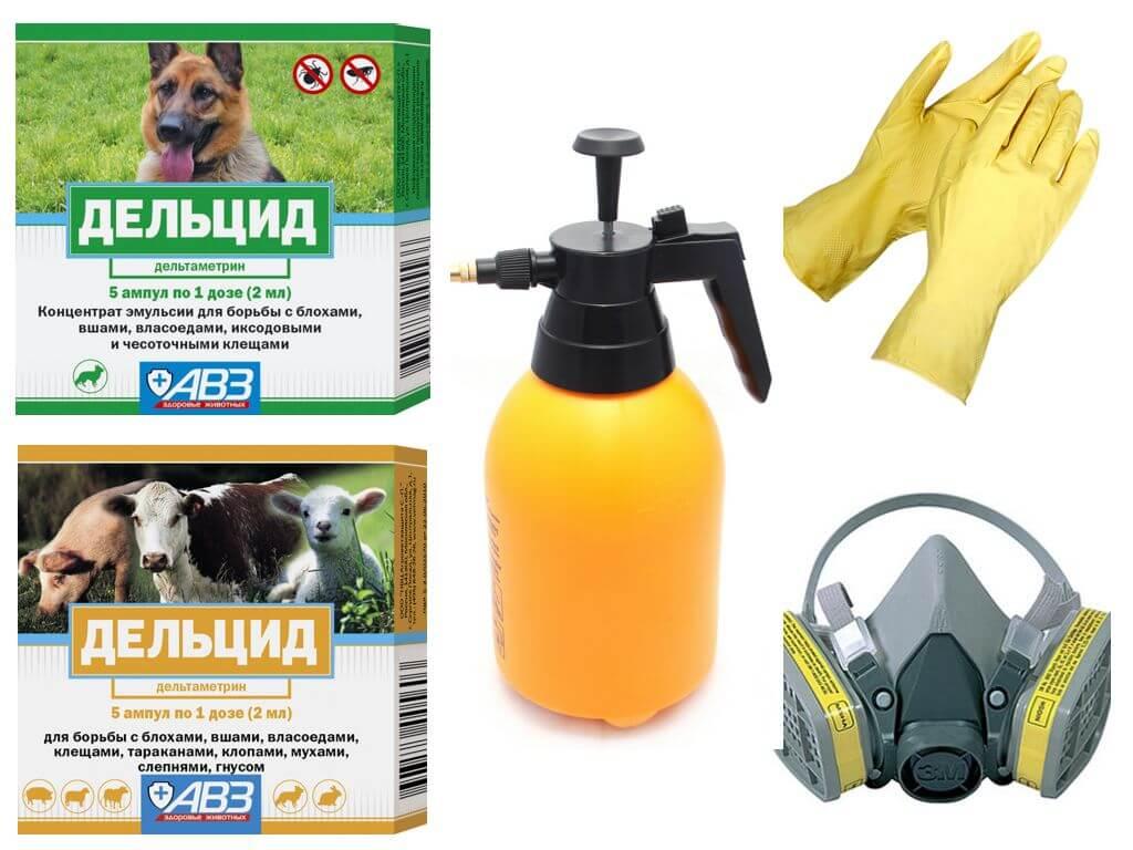 Меры безопасности при работе с инсектицидом