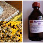Муравьиная кислота от муравьев в улье
