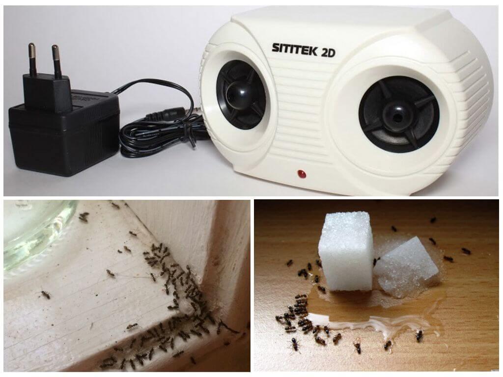 Ультразвуковые устройства для борьбы с муравьями