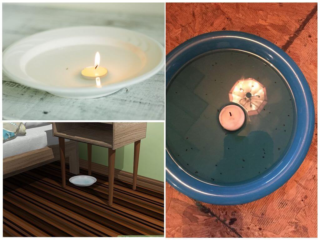 Ловушка для блох с плавающими свечами
