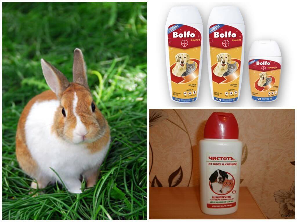Шампуни для выведения блох у кроликов