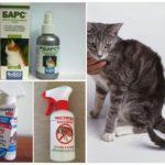 Спреи для кошек от блох
