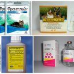 Средства для борьбы с эктопаразитами