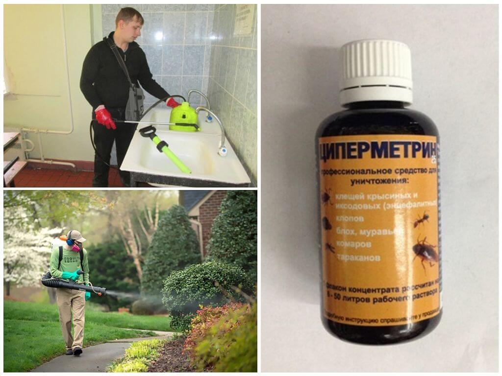 Эффективность Циперметрина от комаров