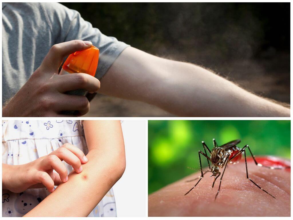 Использование спрея проти насекоомых