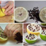 Лимон с гвоздикой от комаров