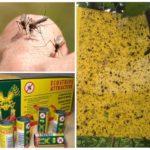 Липкие ловушки для насекомых