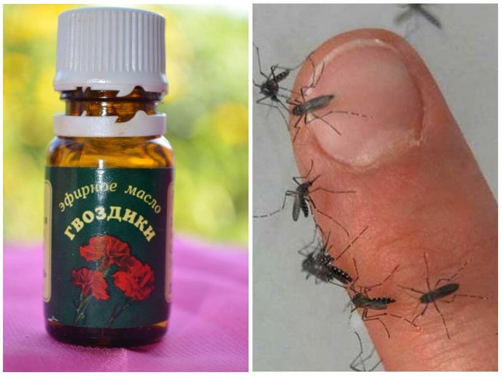 Эфирное масло гвоздики от комаров