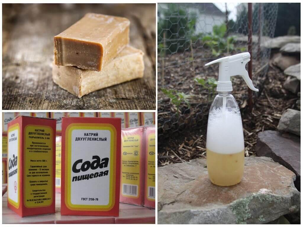 Как сделать мыльно содовой раствор