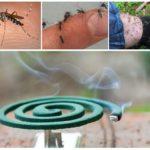 Эффективность спирали от насекомых