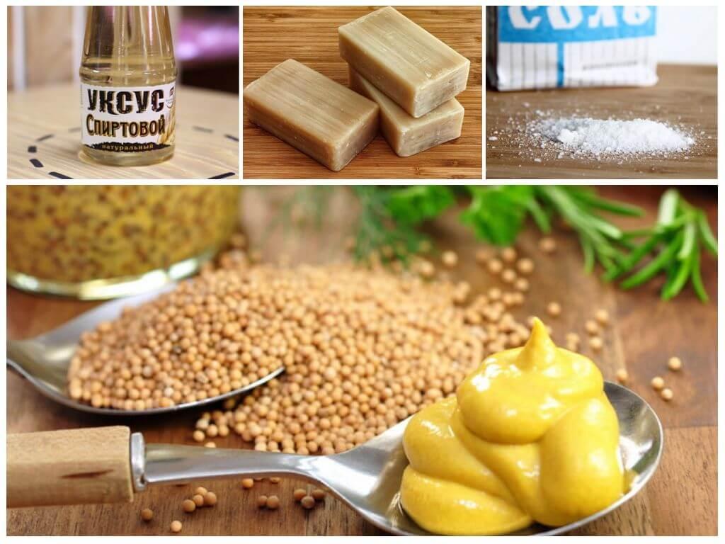 Народные рецепты с горчицей против тли