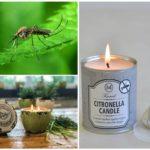 Свечи для защиты от комаров