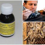 Лечение с помощью продуктов восковой моли и ее личинок