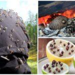 Самодельные отпугиватели от комаров