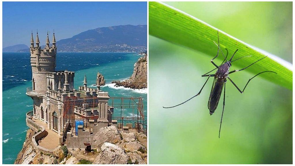 Комары в Крыму