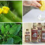 Антисептические средства от укусов комаров на природе