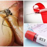 СПИД и комары