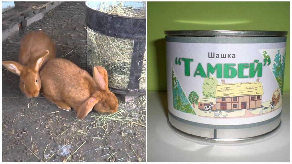 Шашка Тамбей для защиты кроликов от комаров