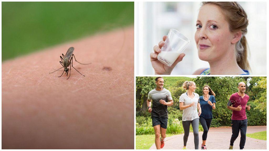 Запахи, привлекающие комаров