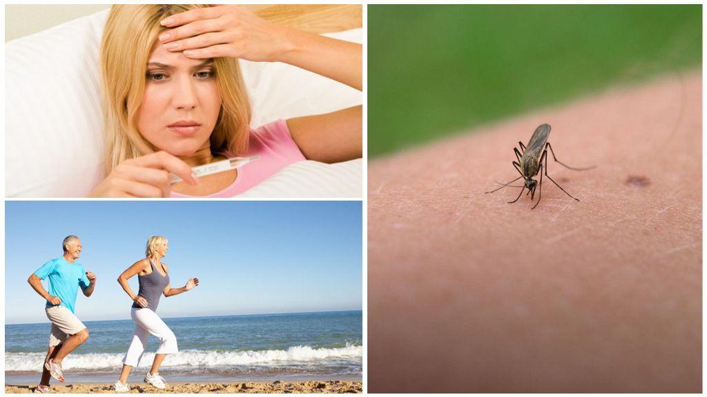Тепло тела для комаров