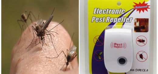 Ультразвук от комаров