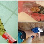 Механические приемы борьбы с мухами