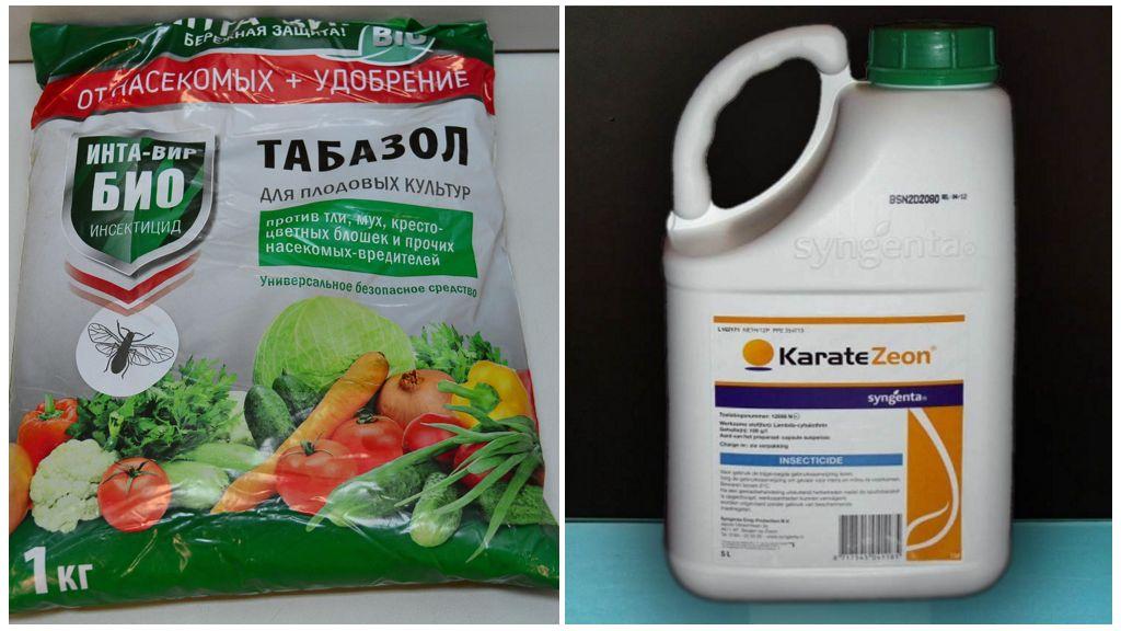 Препараты для борьбы с луковой мухой