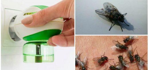 Жидкий фумигатор от мух