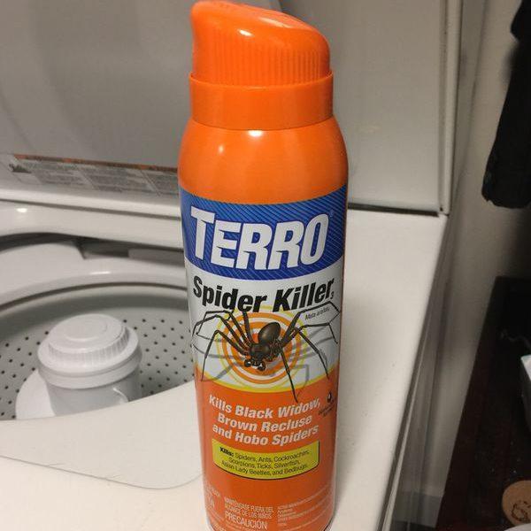 Химические препараты от пауков